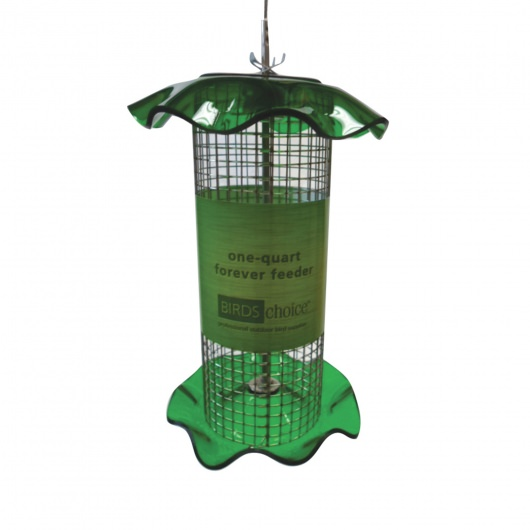 Green Acrylic 1 Quart Sunflower Forever Feeder