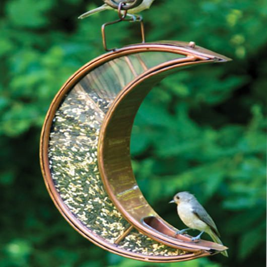 Crescent Moon Bird Feeder - Venetian Bronze