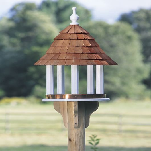 Lazy Hill Bird Feeder