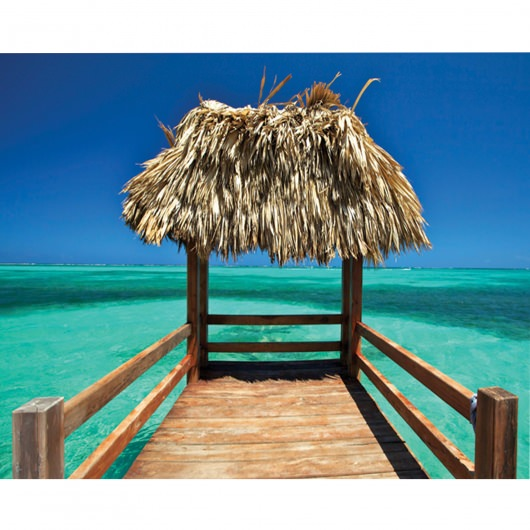 Island Way Five O' One 30x40 Inch Outdoor Canvas Art