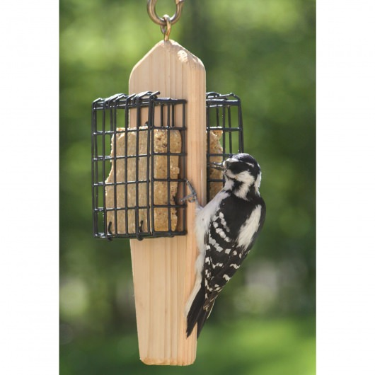 Cedar Double Cake Hanging Suet Feeder