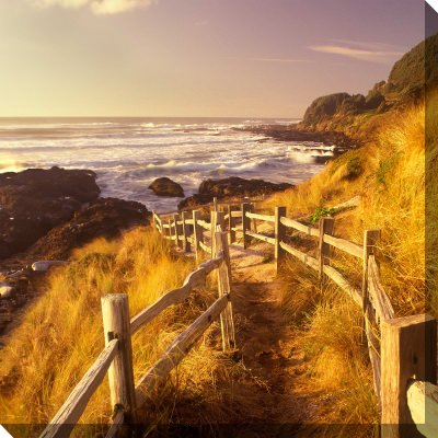 Pathway To Beach Outdoor Wall Art Piece