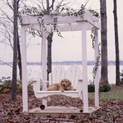 Fanback Collection Adirondack Swing - Pine -