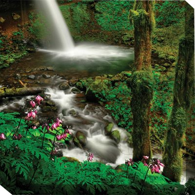 Forest And Falls Outdoor Wall Art Piece