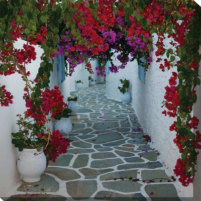 Bougainvillea Path Outdoor Wall Art Piece