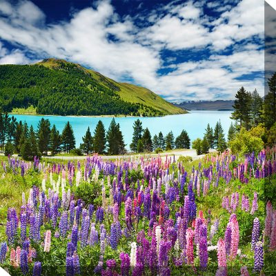 Lake Of Lupines Outdoor Wall Art Piece