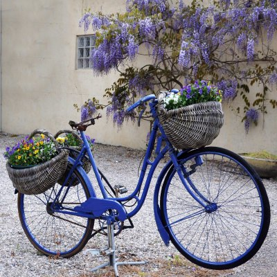 Blue Bike Outdoor Wall Art Piece