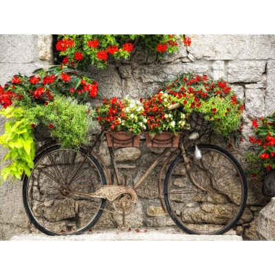 Rusty Bicyclette Outdoor Wall Art Piece