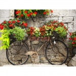 Rusty Bicyclette Outdoor Wall Art