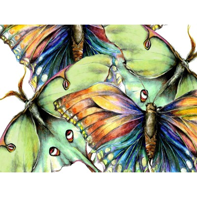 Pastel Butterfly No. 2 Outdoor Wall Art Piece