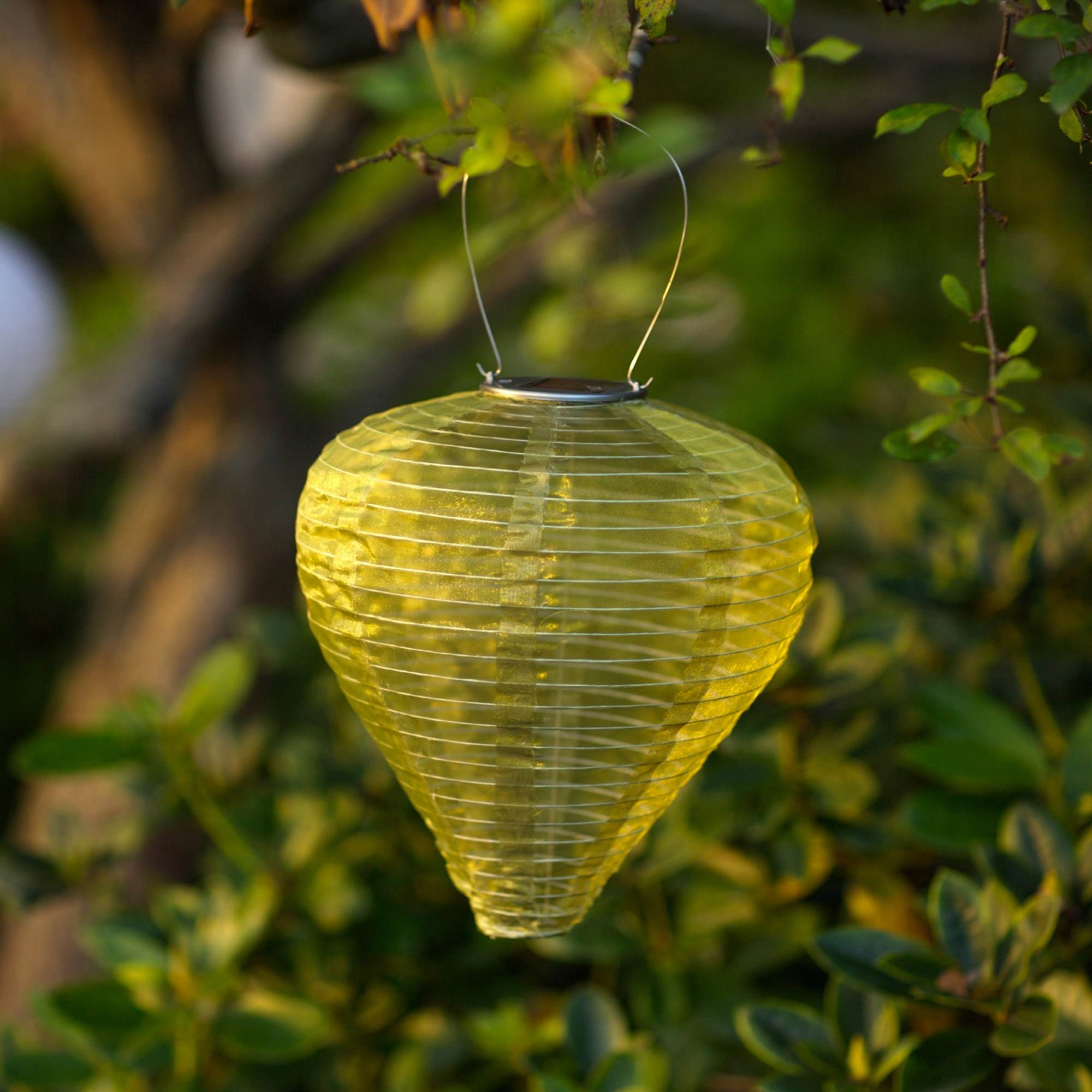 Soji Silk Effects Teardrop Solar Lantern in Moss