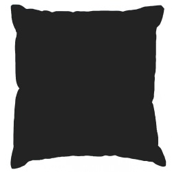 Black Sunbrella Outdoor Throw Pillow (16 in. x 16 in.)