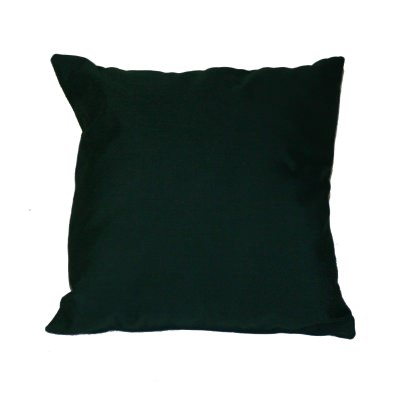 Forest Green Sunbrella Outdoor Throw Pillow 19 in. x 19 in. Square