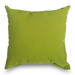 Grass Sunbrella Outdoor Throw Pillow 16 in. x 16 in. Square