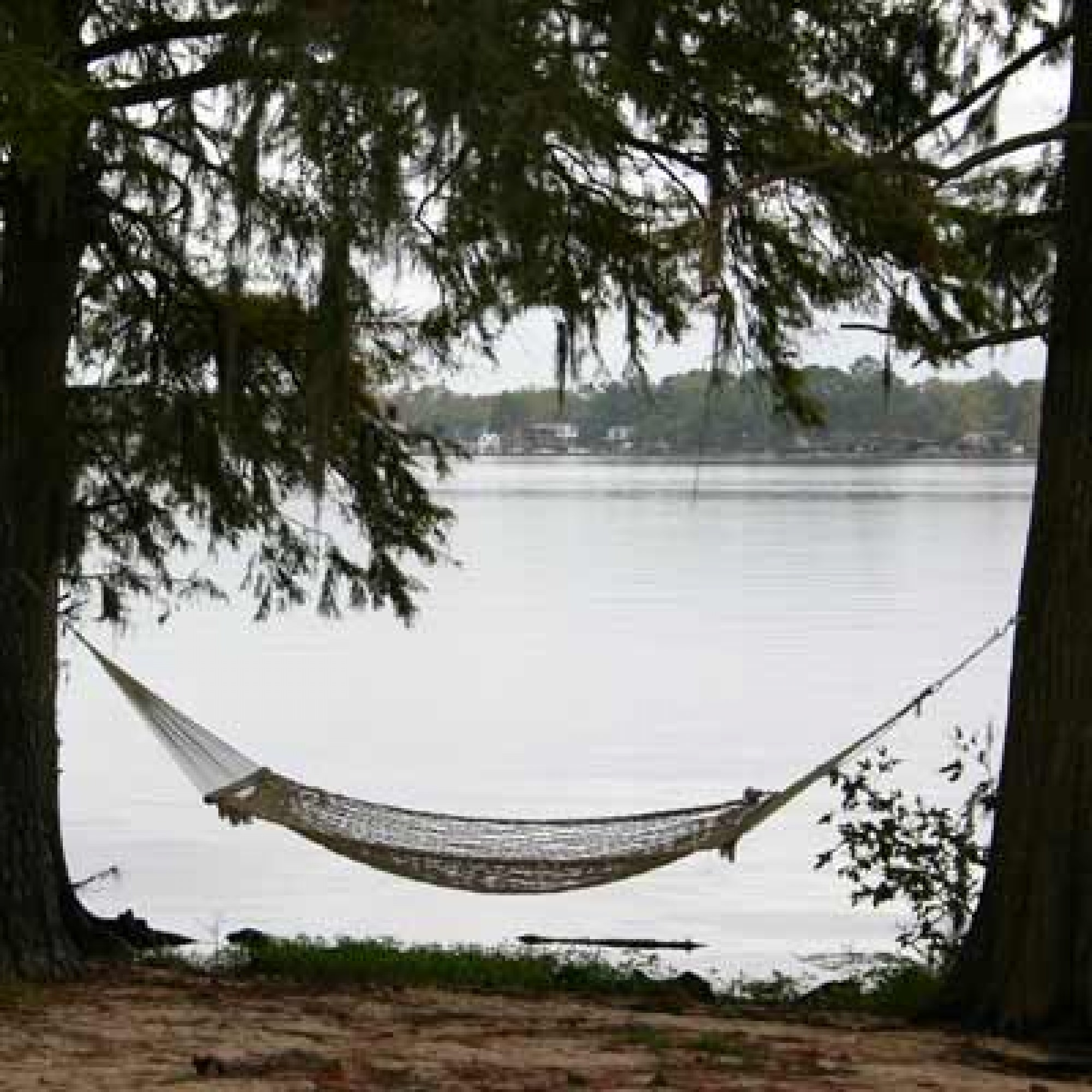 product c rope swing stand cradle hammock chair detail frame steel porch cotton