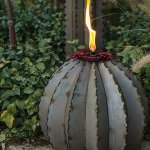 Golden Barrel Cactus Torch - 2 sizes!
