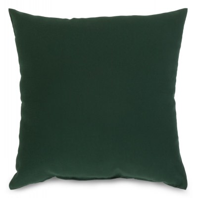 Green Outdoor Throw Pillow 16 in. x 16 in. Square