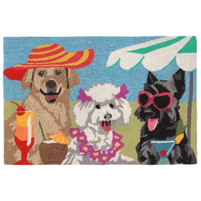 Frontporch Sassy Lassies Bright Outdoor Rug
