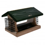 Cedar 5 Quart 2-Sided Hopper Feeder with 2 Suet Cages in Deep Green