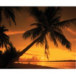 Island Way Sunset Fire 30x40 Inch Outdoor Canvas Art