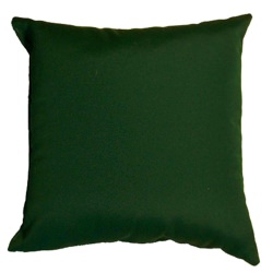 Forest Green Sunbrella Outdoor Throw Pillow (16 in. x 16 in.)