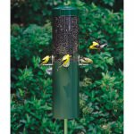 Classic Feeder with Squirrel Baffle and Pole