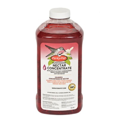 Perky Pet Hummingbird Nectar Concentrate
