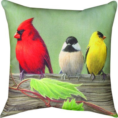 Novelty Outdoor Pillows
