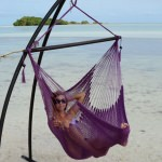 Plum Purple Caribbean Swing