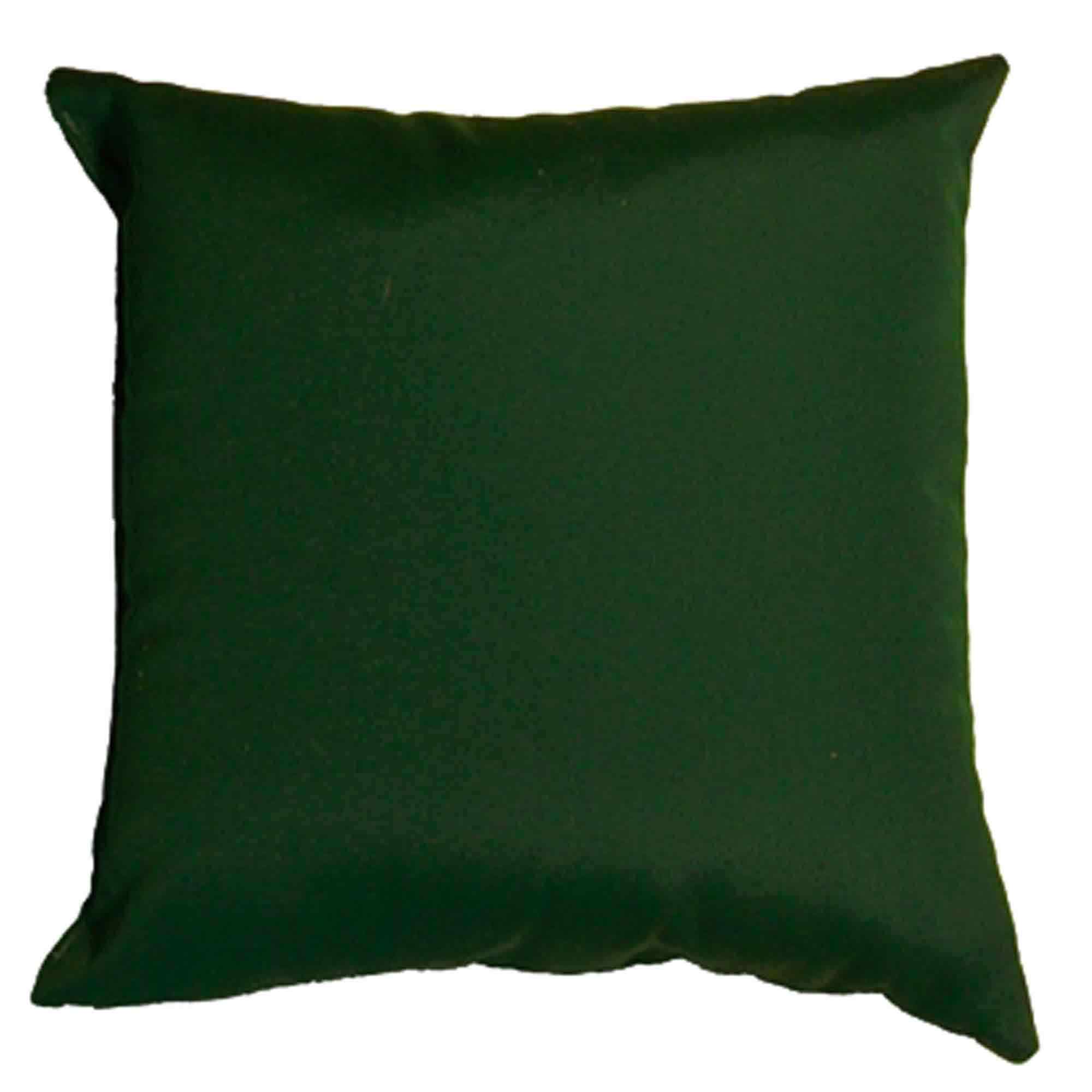 Shop Forest Green Sunbrella Outdoor Throw Pillow 16 In X 16 In Essentials By Dfo Pillows Outdoors Dfohome Com
